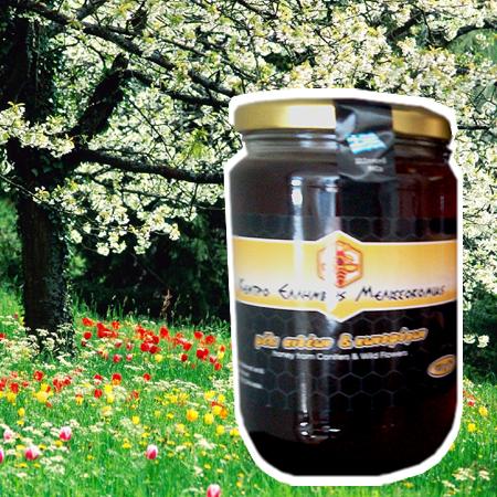 Ekologisk honung från Grekland