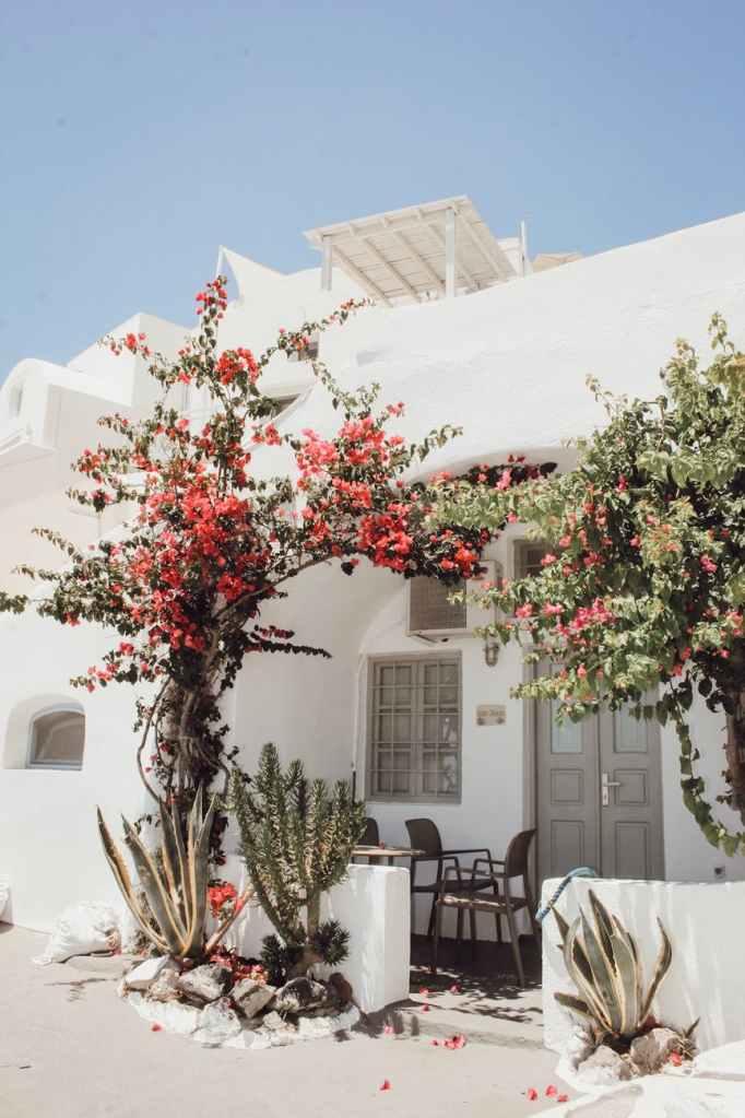 Pastitsio känner du säkert igen från semestern i Grekland